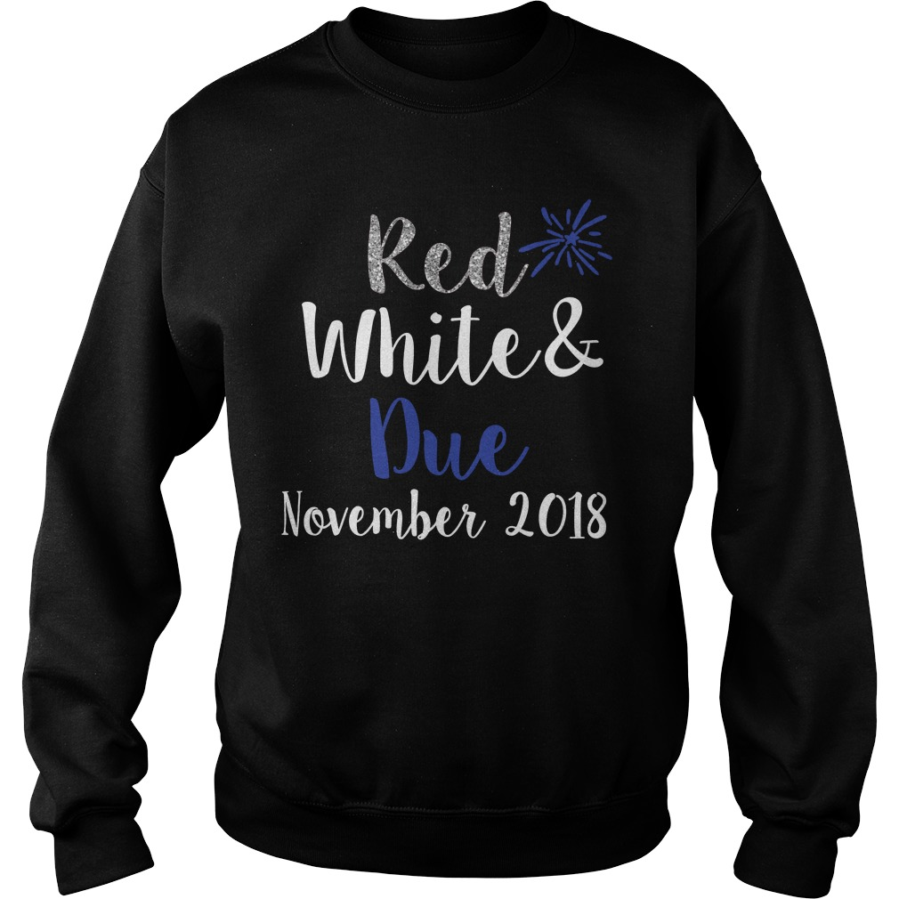 Red white and Blue november 2018 Sweater