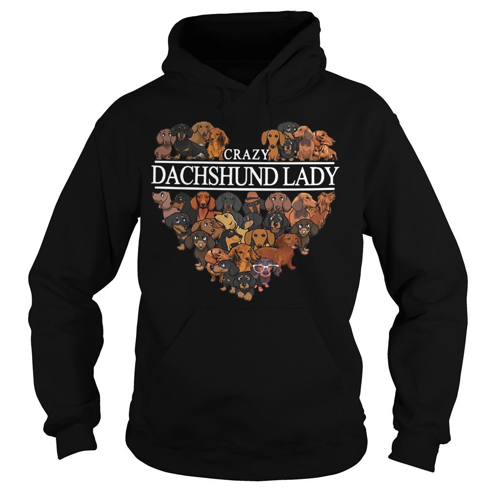 Crazy Dachshund lady aholic hoodie