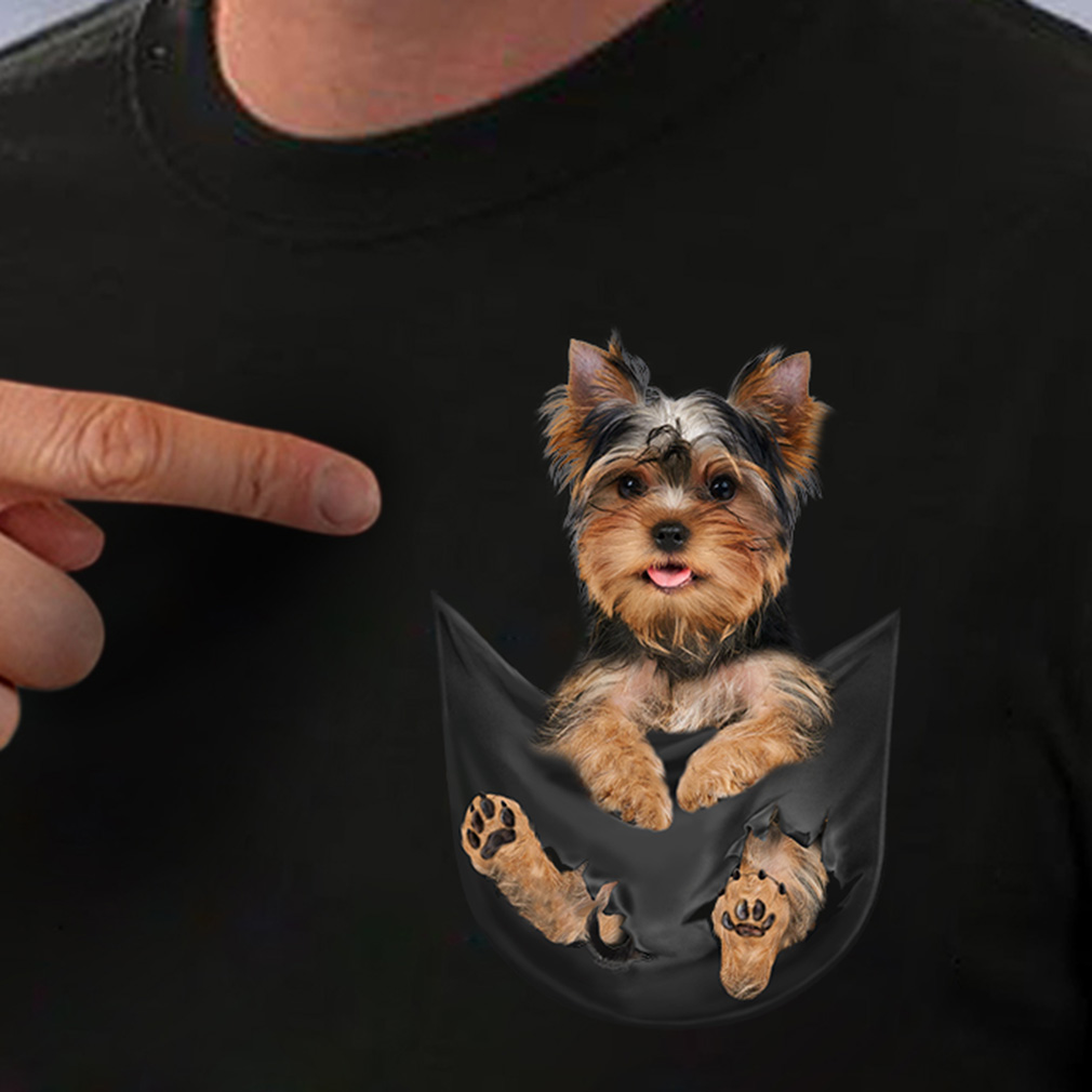 Yorkshire Terrier in a pocket shirt