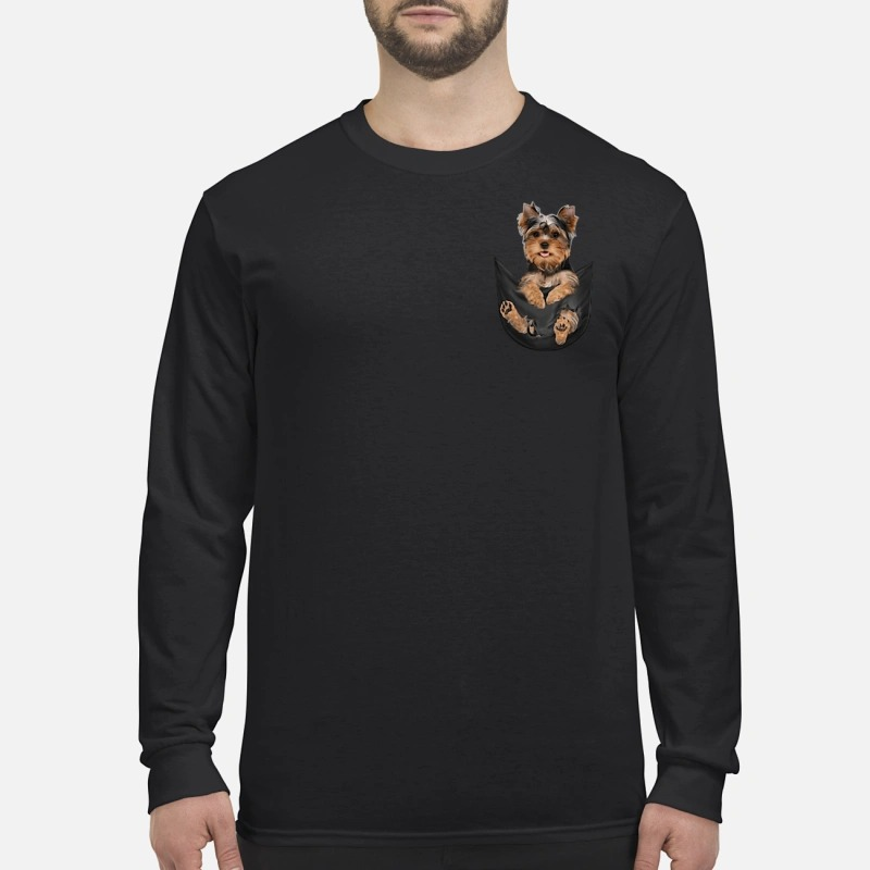 Yorkshire Terrier in a pocket Sweater