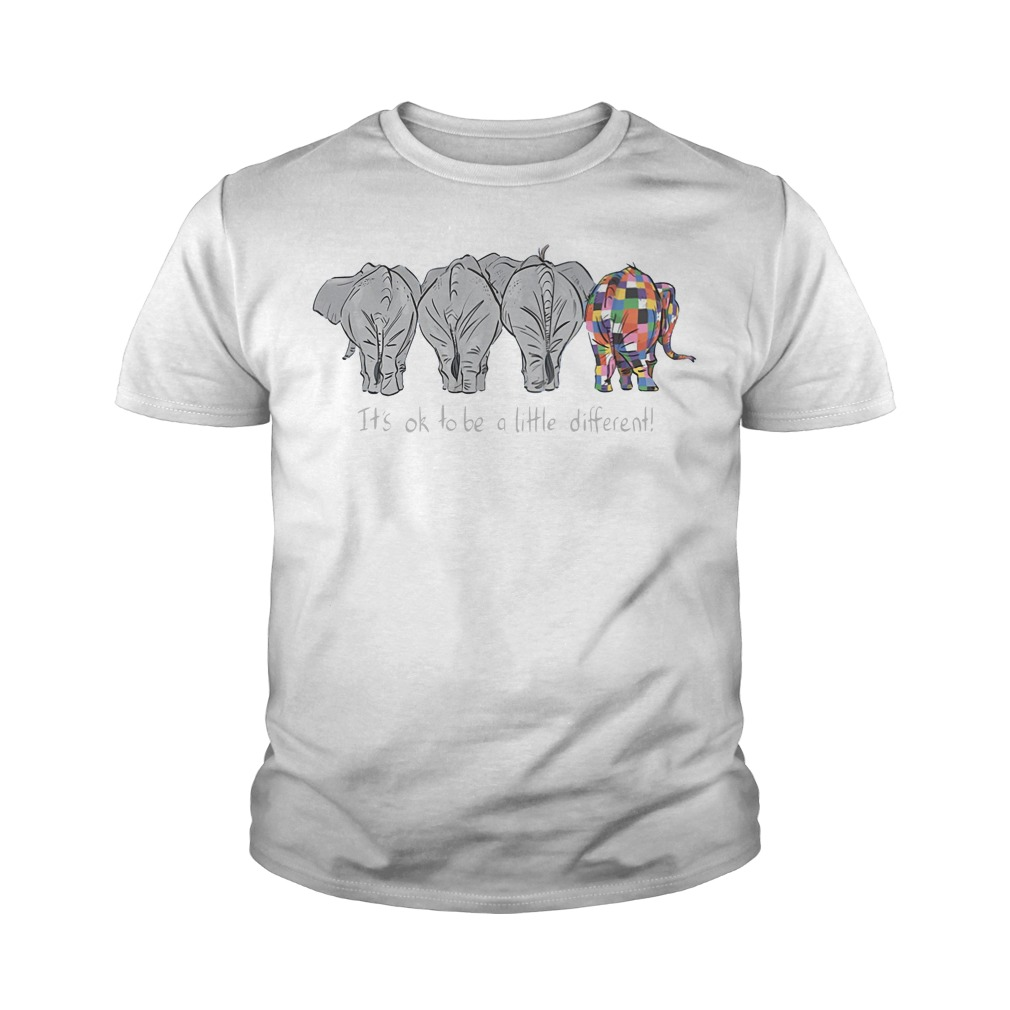 Autism Elephant It's ok to be a little different youth tee
