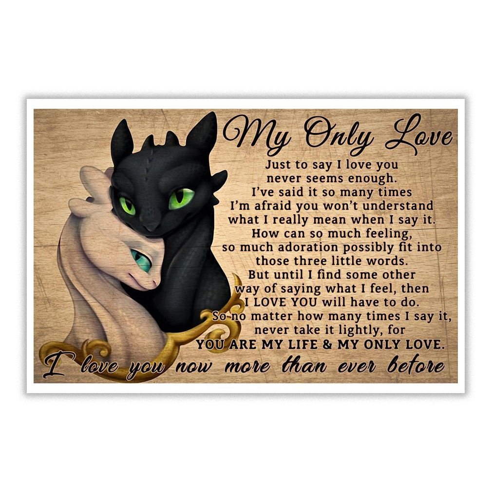 Toothless: Night and Light Fury my only love just to say I love you poster